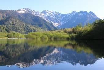 新緑の大正池